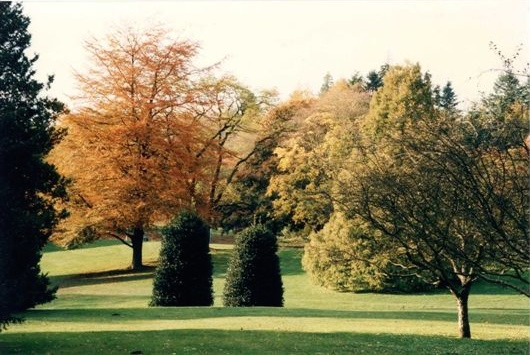 riverview fall grounds