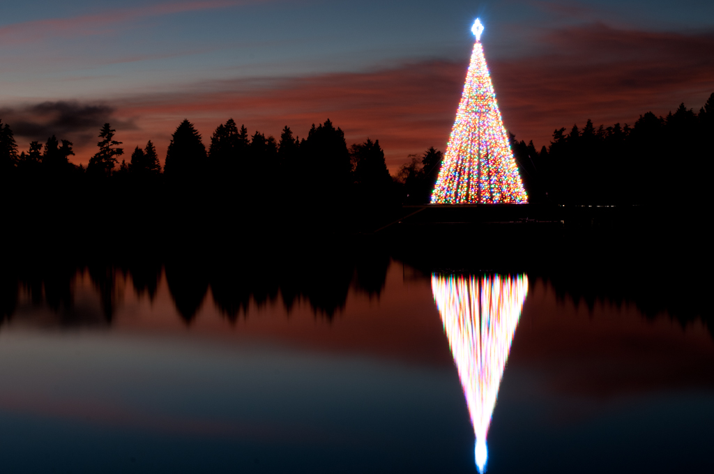 Lost Lagoon Christmas Tree Stanley PArk