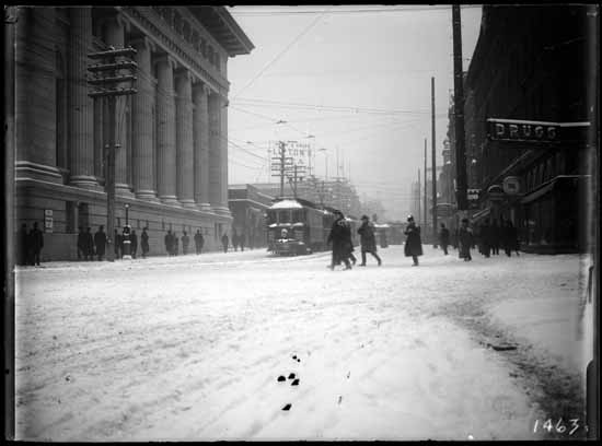 Granville at West Hastings in the snow