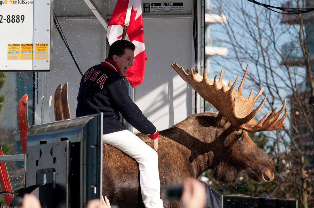 stephen colbert report moose