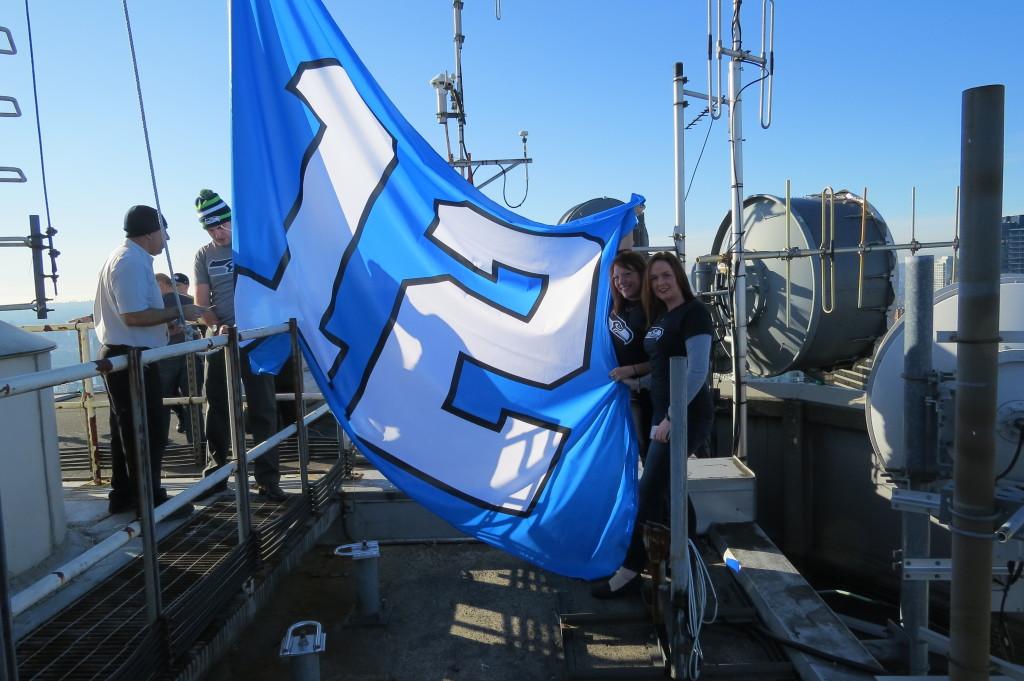 Seahawks Flag3