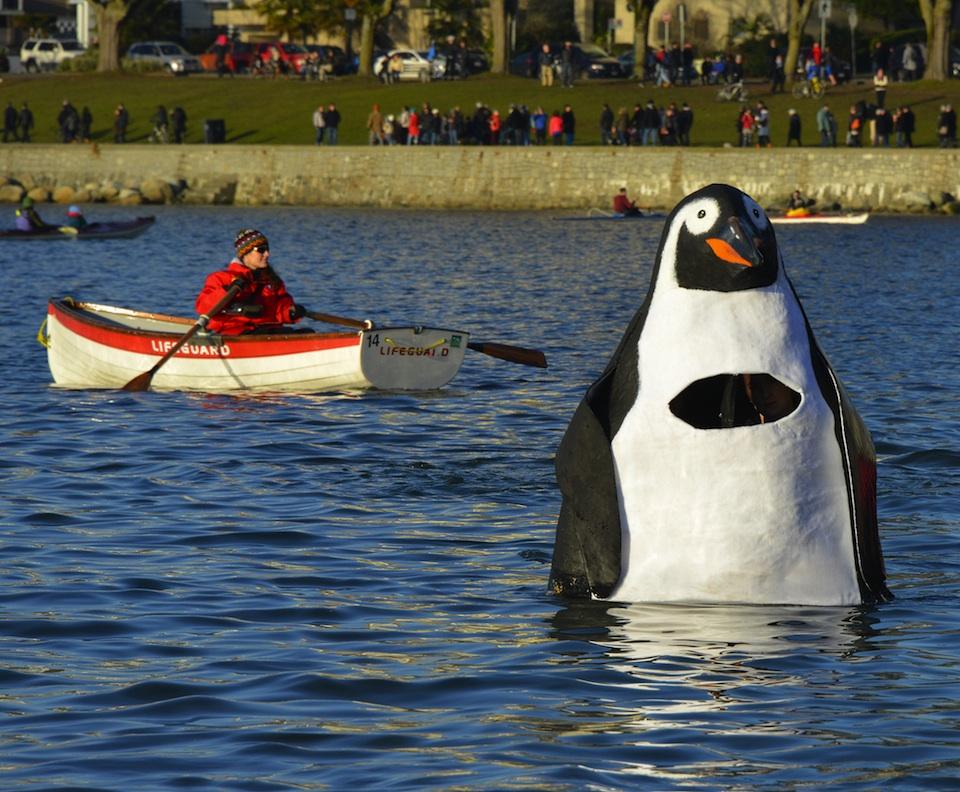 polarbearswim15-07