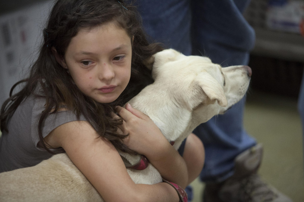 More than 3,500 animals found forever homes at last year's adoption event. (PetSmart)