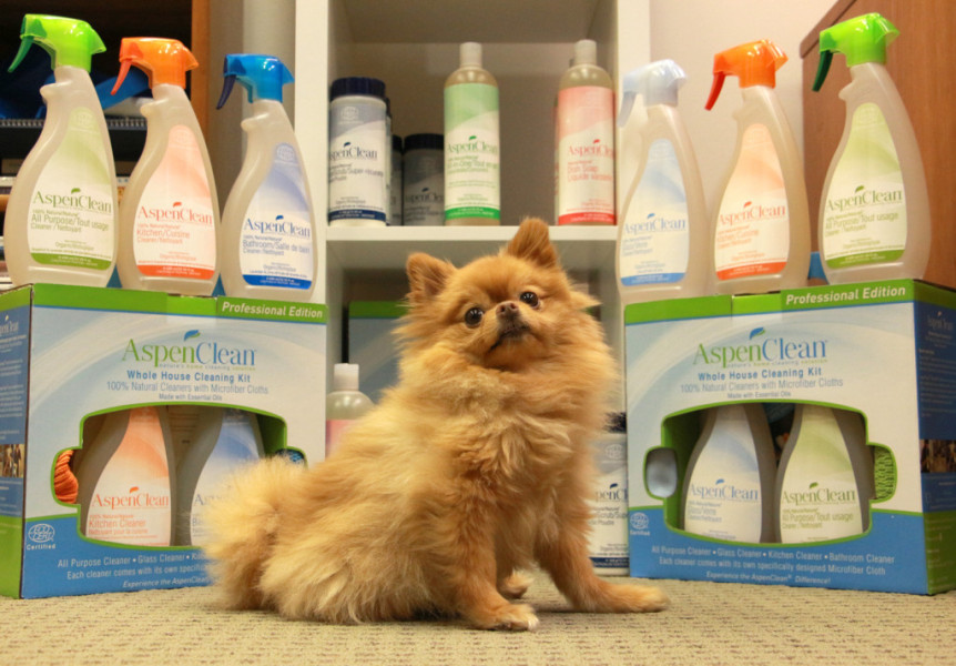 An adorable pup surrounded by AspenClean's colour-coded cleaning system. (AspenClean)