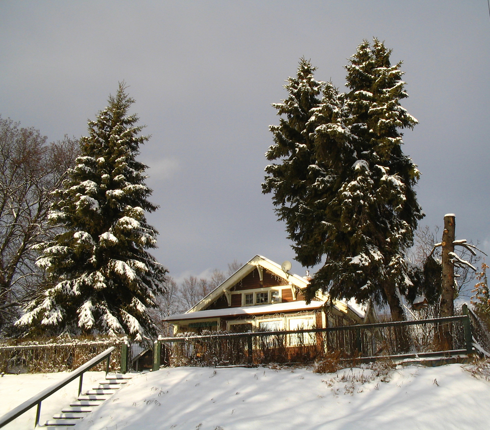 alpine-house