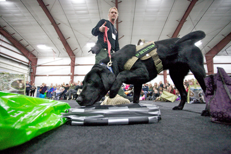 A demonstration from the Canadian K9 Detection Dogs.