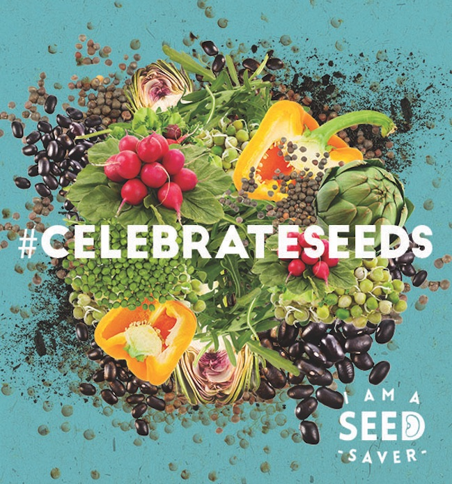 Image courtesy Celebrate Seeds