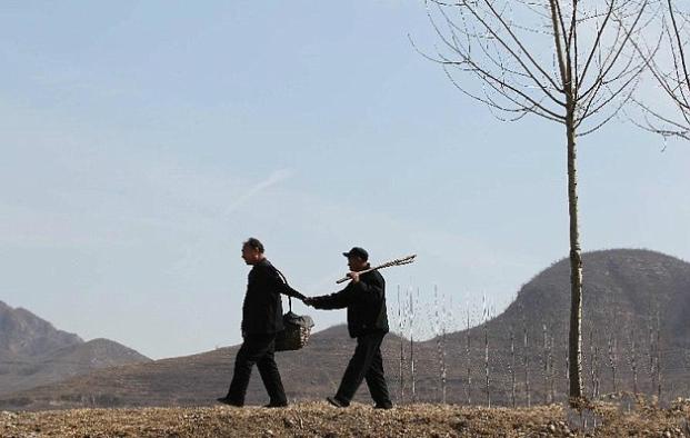 Yan Zhiguo/ Xinhua