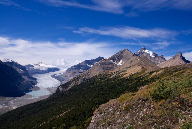 Saskatchewan Glacier, Image: Gary / Flickr
