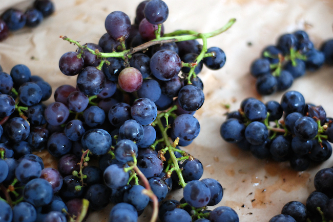 Grapes at the West End Farmers' Market (Stephanie Vacher/Flickr)