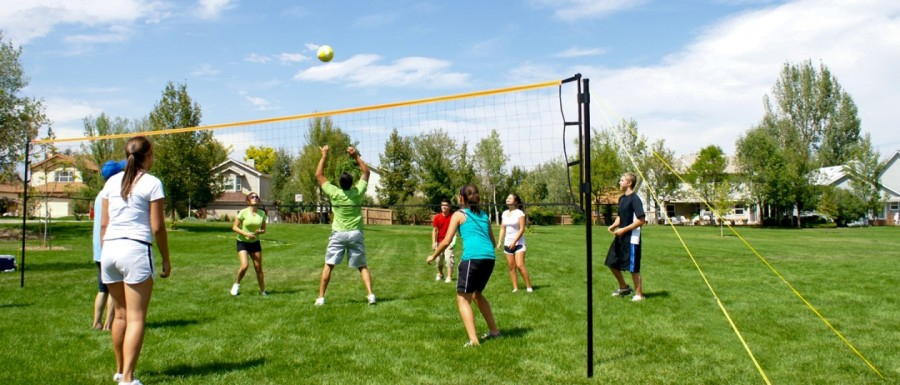 Image: Volleyball BC