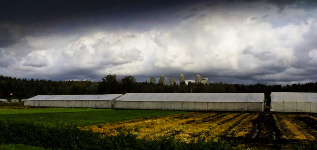 Greenhouse in Burnaby (Marcia and Mike Nelson/Flickr)