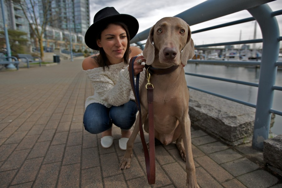 Janet with Lenny a Weimaraner