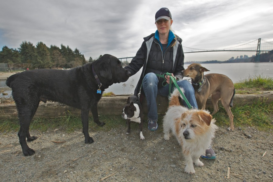 Lisa with Jasper a Labrador, Santana a Mexican Stray and Luna a Boston Terrier.
