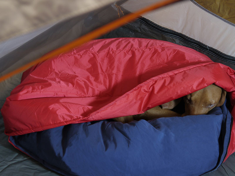 Noble Camper zippable dog bed 2 (NobleCamper.com)