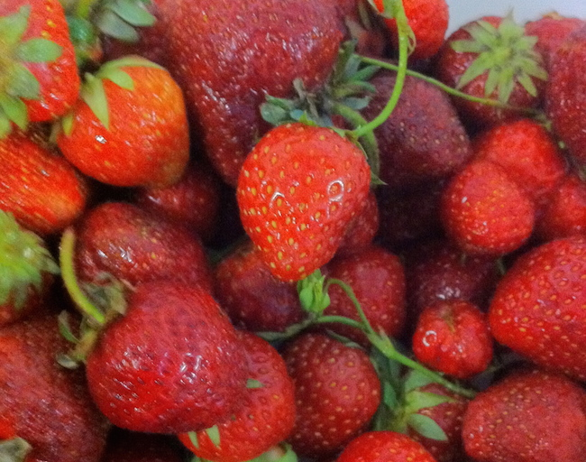Fresh local strawberries (Photo courtesy Jonathan Chovancek)