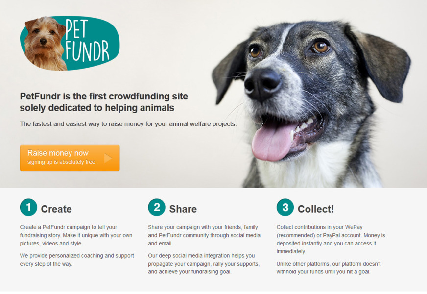 PetFundr lets users upload their unique campaign and share it on social media.