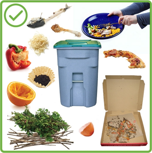 yes-green-bin-infographic