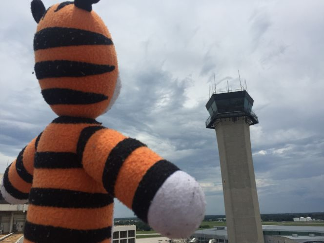 Image: Tampa International Airport
