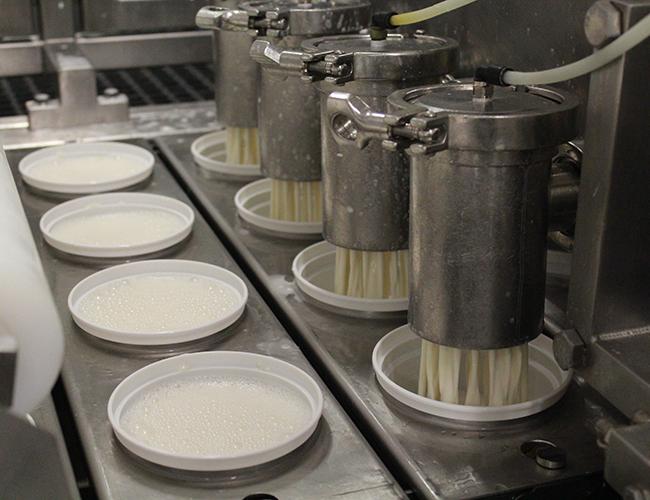 Liquid yogurt being packaged (Jen Muranetz)