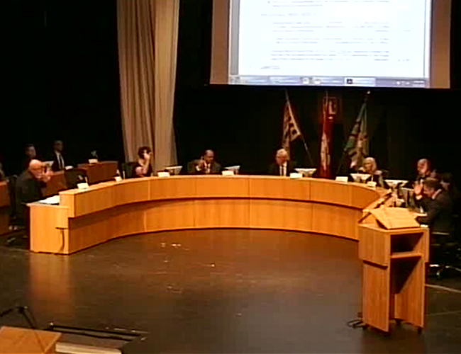 Council voting to pass motion (screenshot)