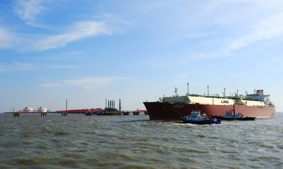 Image courtesy of Woodfibre LNG Limited