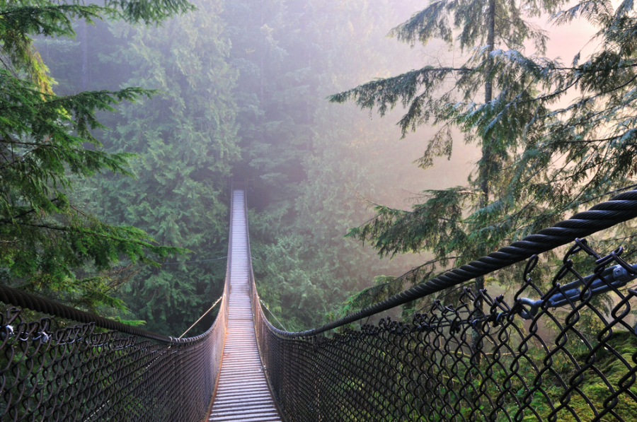 Lynn Canyon Suspension Bridge/Shutterstock