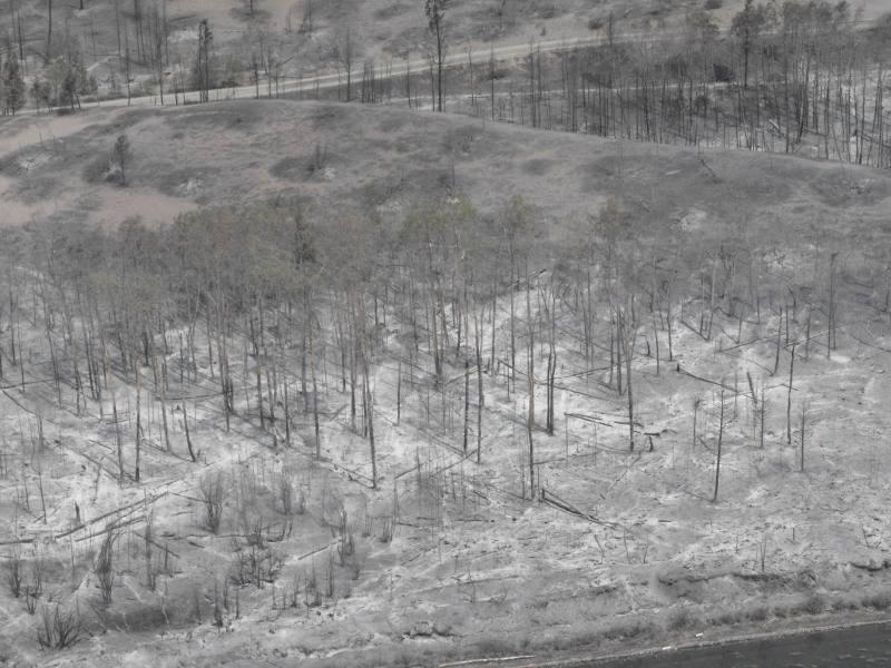 Cariboo Regional District Puntzi Lake Fire