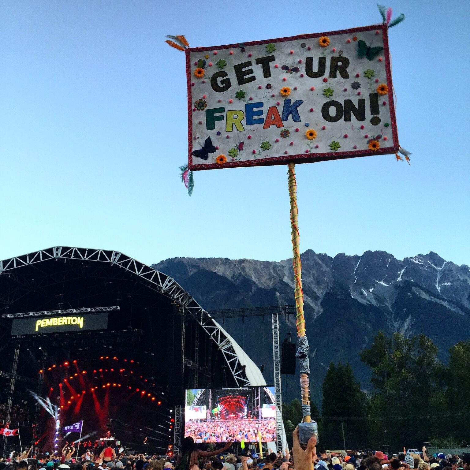 Pemberton Music Festival Crowds 5