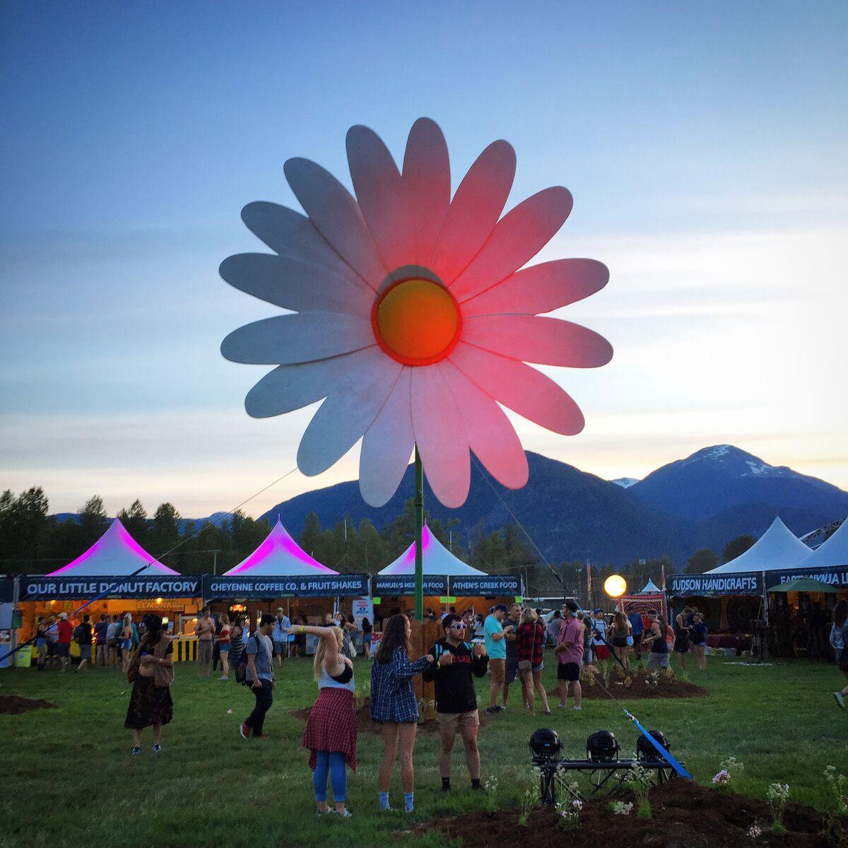 Pemberton Music Festival flower