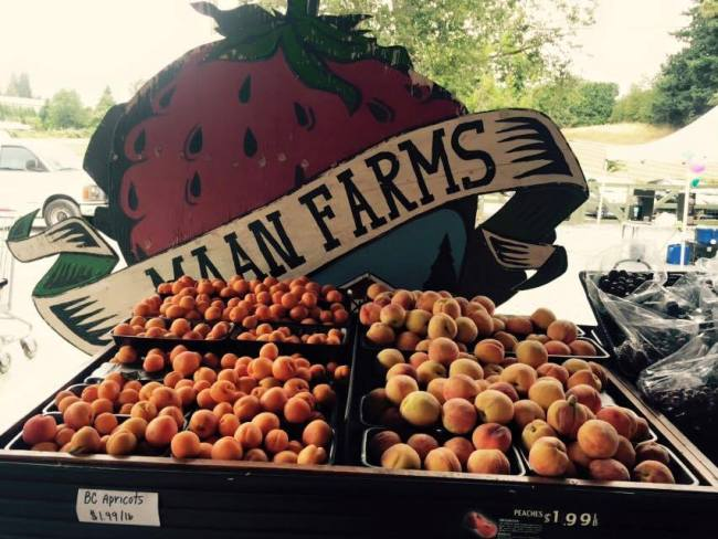 Fruit at Maan Farms (Maan Farms)
