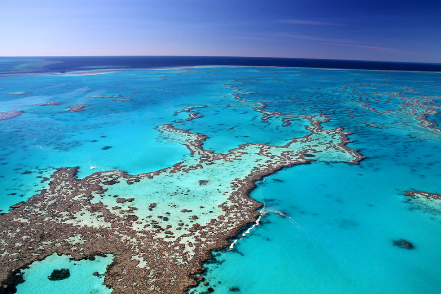 Image: Great Barrier Reef via Shutterstock