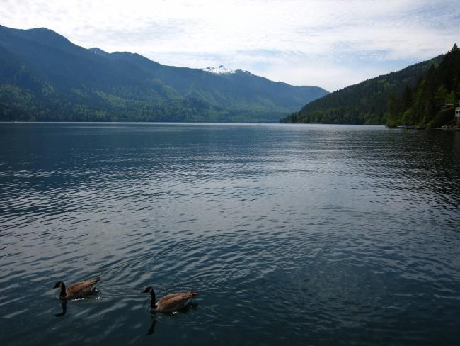 Views at Cultus Lake (GoToVan/Flickr)