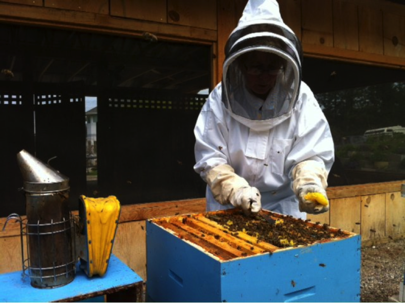 Tourism Kelowna - Honey Farm