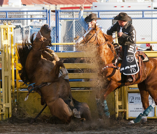 Bronco riding rodeo event (Chung Chow)