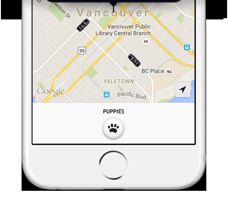 vancouver_UberPUPPIES_half-screenshot_r21