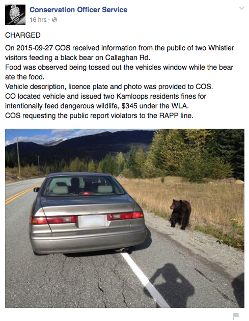 Image: Facebook/Conservation Officer Services