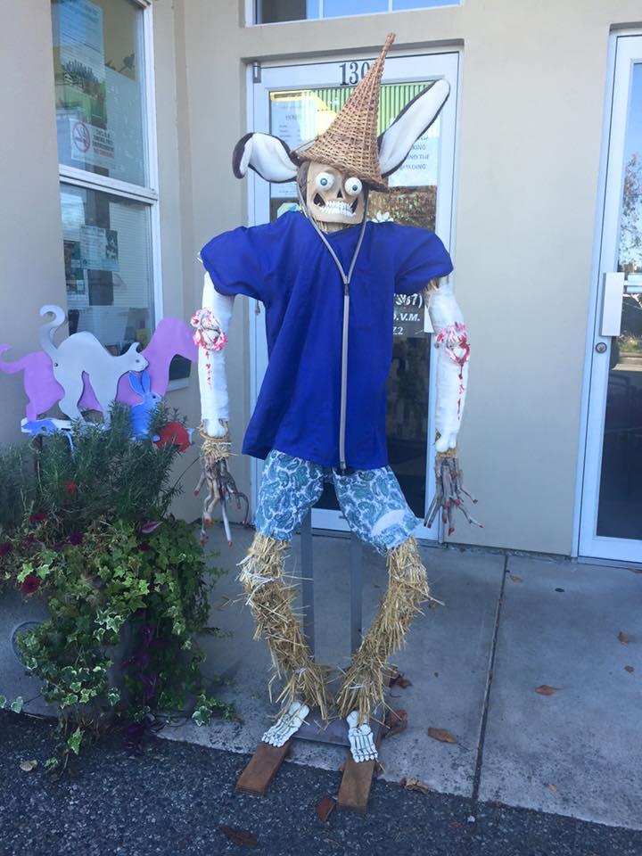 Image: Steveston Scarecrow Crawl via Facebook