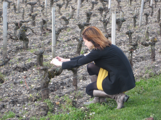 Barb Philip in the vineyard (Photo courtesy BC Liquor Distribution Branch)