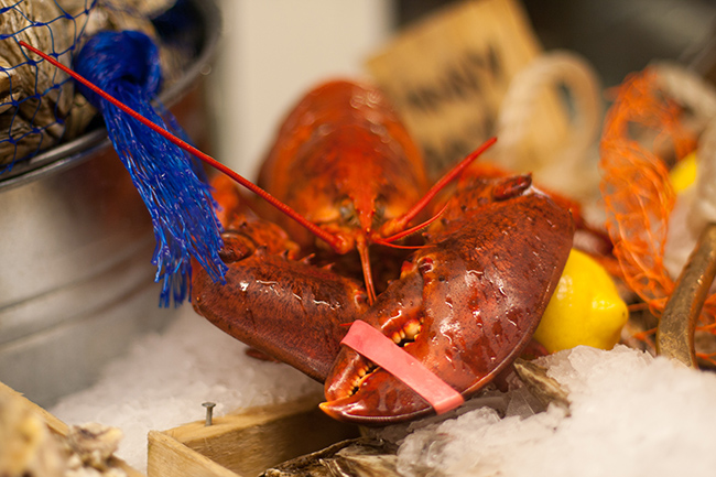 Lobster-supper-Wild-Tale