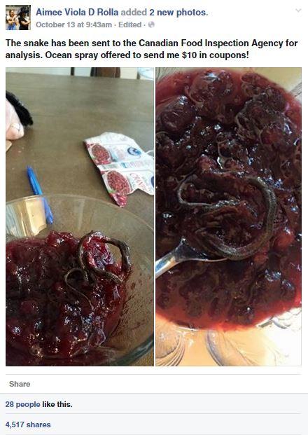 cranberry sauce snake