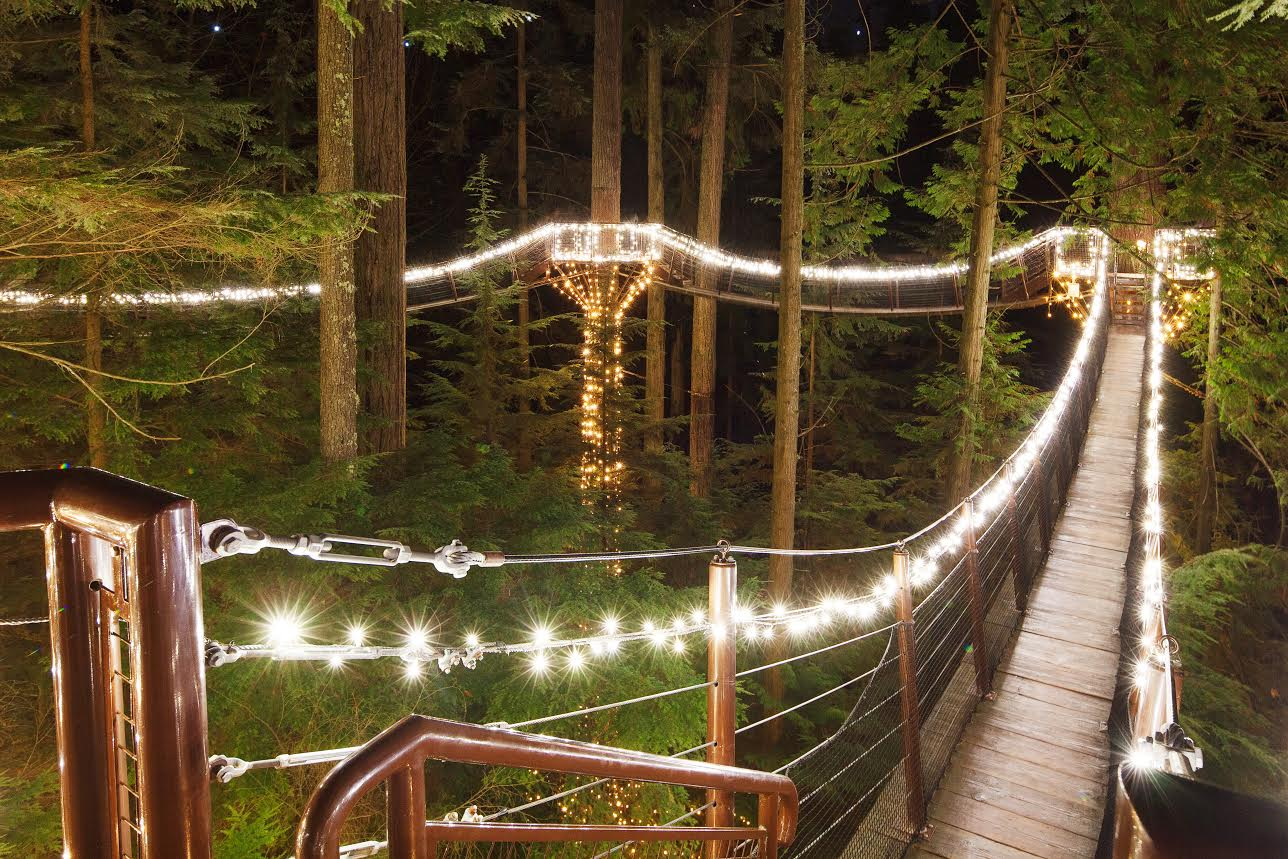 canyon lights cap suspension bridge