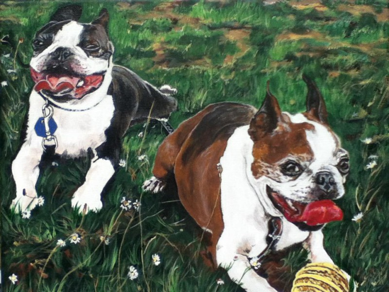 The portrait of Ramsay and Nitro, the pups of CTV host Ann Luu.