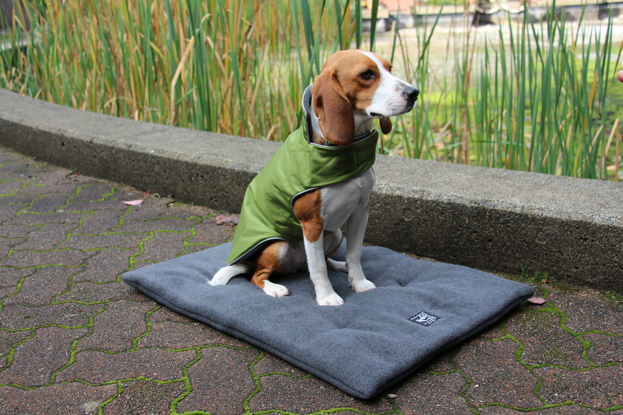 The waterproof trench coat.