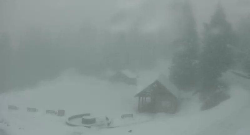 Image: Grouse Mountain webcam