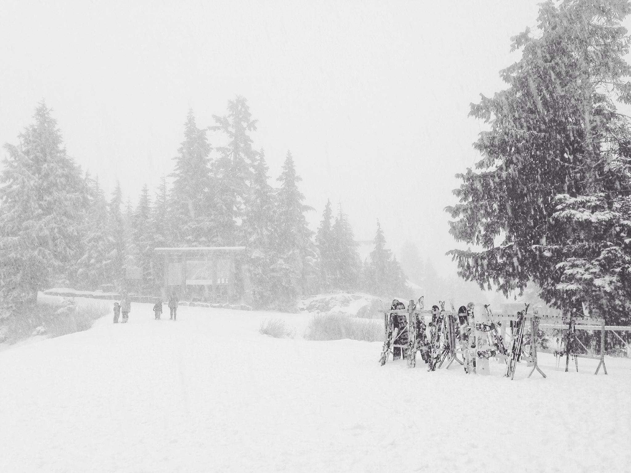 Image: Grouse Mountain via Facebook