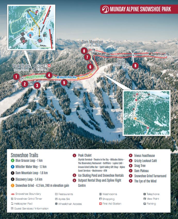 Image: Grouse Mountain