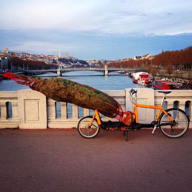 Image: Fends La Bise - Lyon, France (@fendslabise on Twitter)
