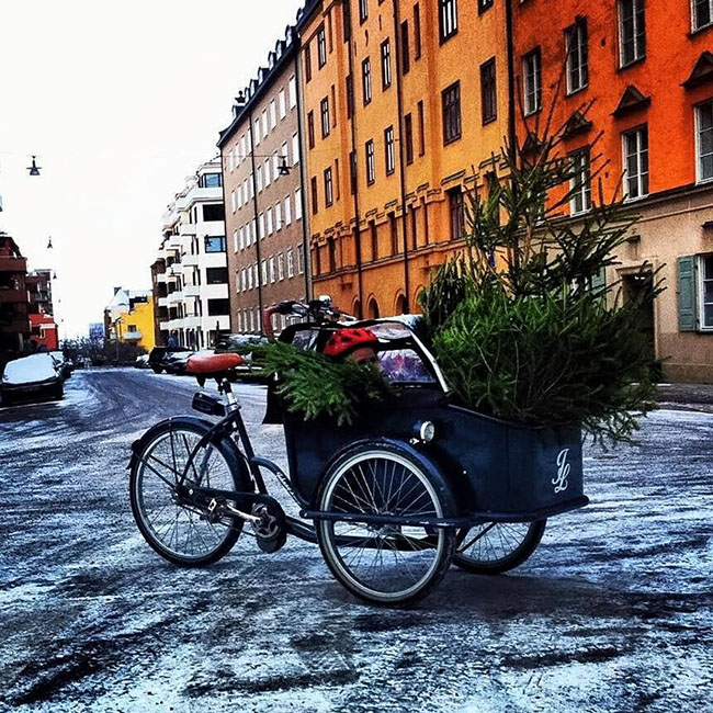 Image: Jeppe Larsen - Stockholm, Sweden (@jeppedylarsen on Twitter)