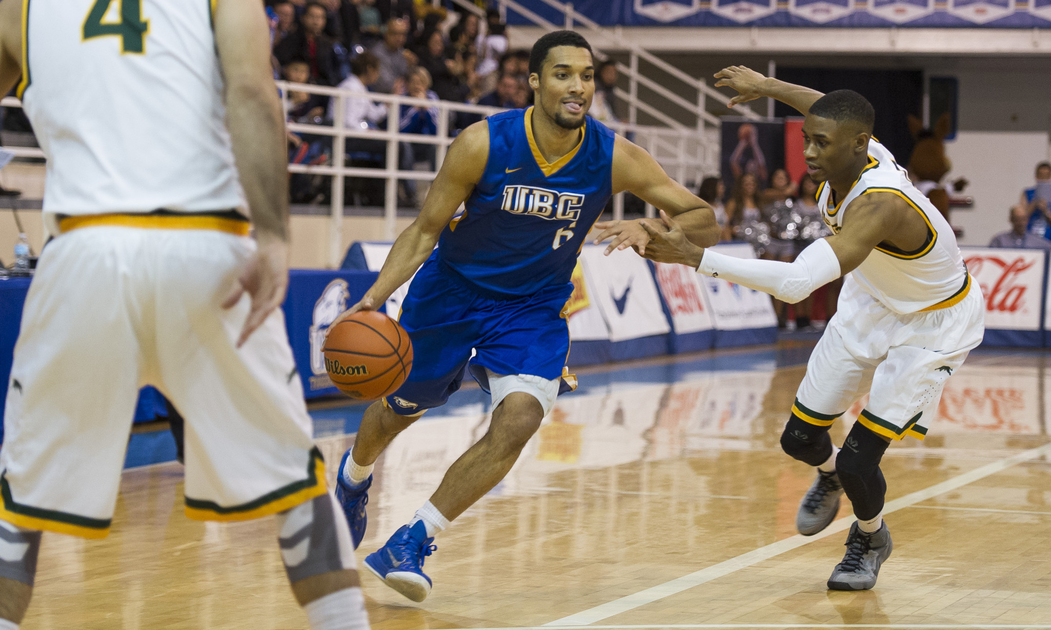 ubc-basketball1